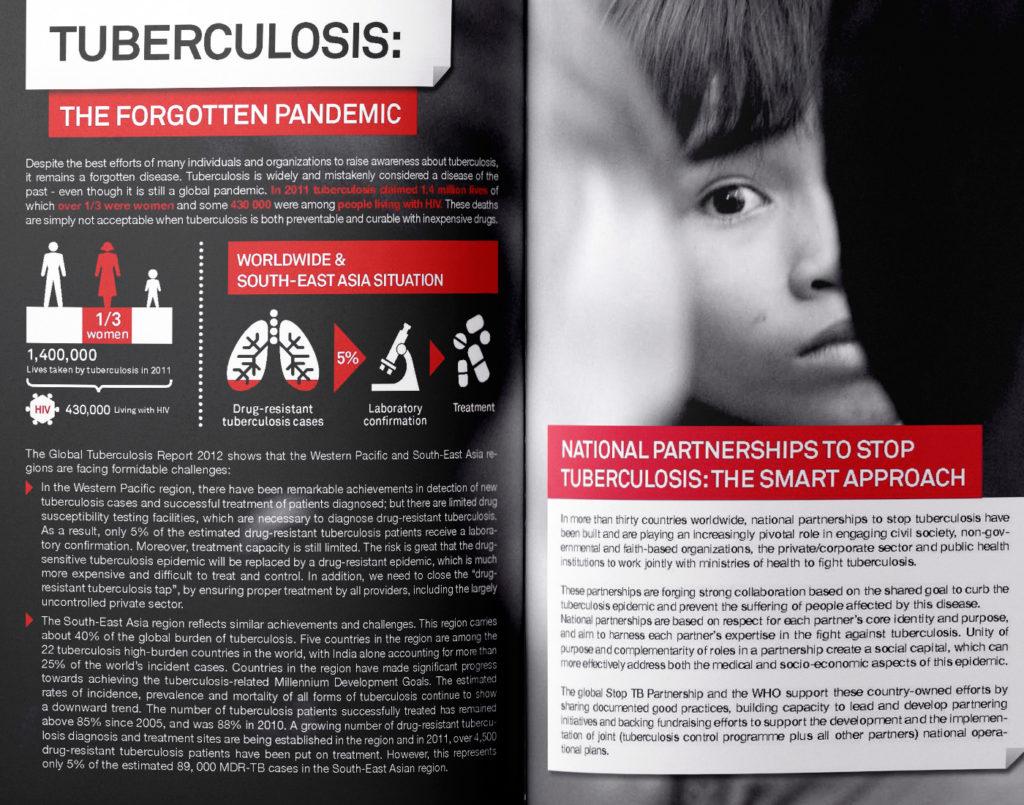 Investing in tuberculosis control brochure